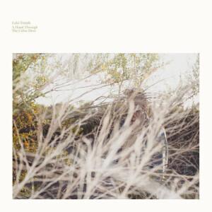 Luke Temple - A Hand Through The Cellar Door (LP)