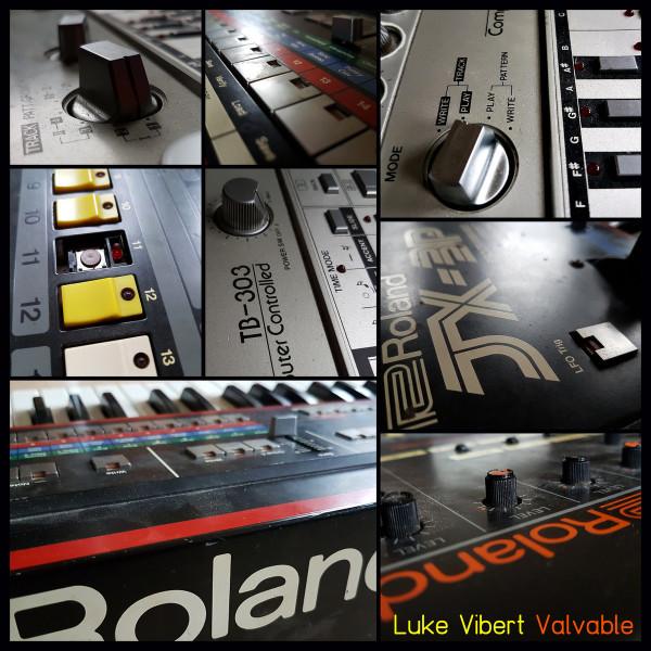 Luke Vibert - Valvable
