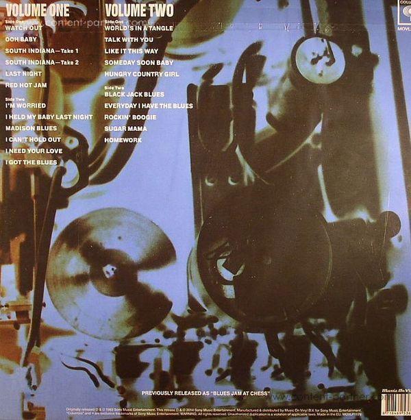 Mac Fleetwood - Blues Jam In Chicago (Back)