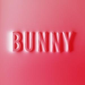Matthew Dear - Bunny (LP)