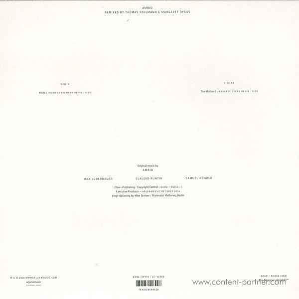 Max Loderbauer, Claudio Puntin & Samuel Rohrer - Ambiq 2 Remixed (Back)