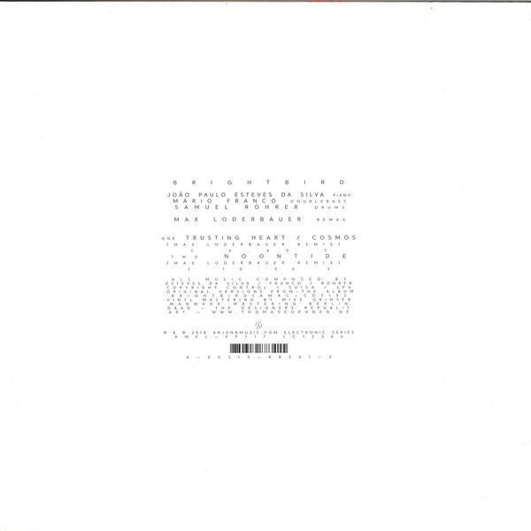 Max Loderbauer - Brightbird Remixes (Back)
