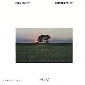 Metheny,Pat - Bright Size Life