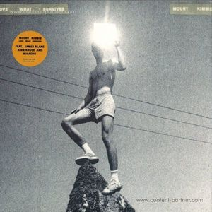 Mount Kimbie - Love What Survives (2LP/Gatefold)