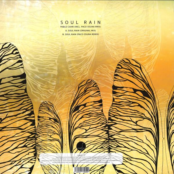 Pablo Cahn - Soul Rain (Back)
