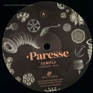 Paresse - Temple (simple Symmetry Remix)