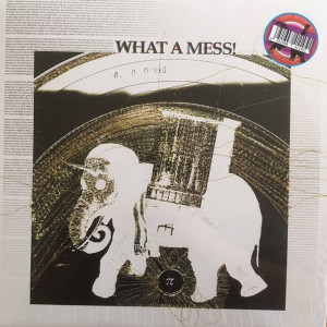 Pepe Bradock - What A Mess! (Ltd. Black Serialised LP)