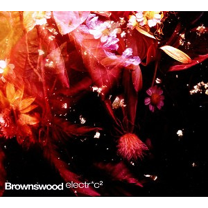 Peterson,Gilles - Brownswood Electric 2