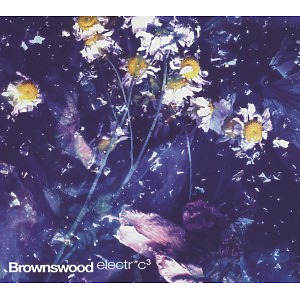 Peterson,Gilles - Brownswood Electric 3