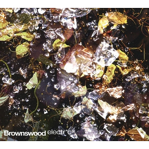 Peterson,Gilles - Brownswood Electric 4