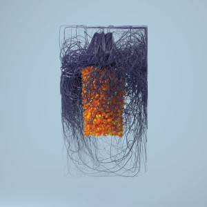 Plaid - Polymer (2LP+MP3)
