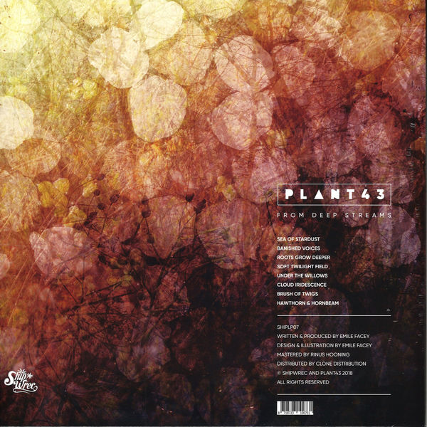 Plant43 - From Deep Streams (Back)