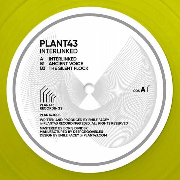 Plant43 - Interlinked