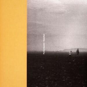 Portico Quartet / Hania Rani - Remix EP
