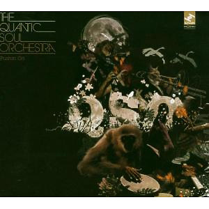 Quantic Soul Orchestra,The - Pushin' On