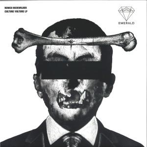 Remco Beekwilder & more - Culture Vulture LP