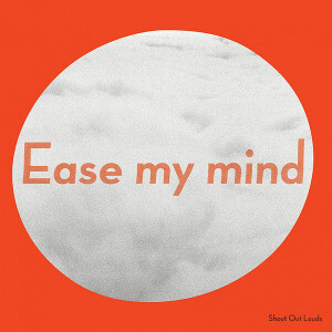 Shout Out Louds - Ease My Mind (LP)