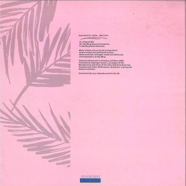 Soma World feat Falle - Want This (feat Ray Mang remix) (140 gram vinyl 12 (Back)