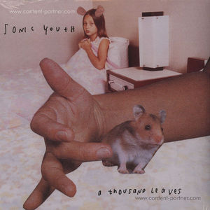 Sonic Youth - A Thousand Leaves (2LP)