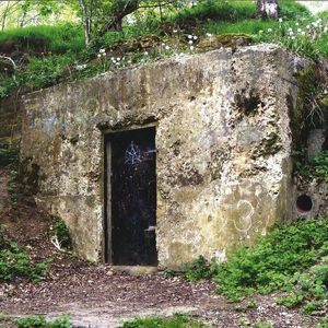 Special Request (paul Woolford) - Stairfoot Lane Bunker