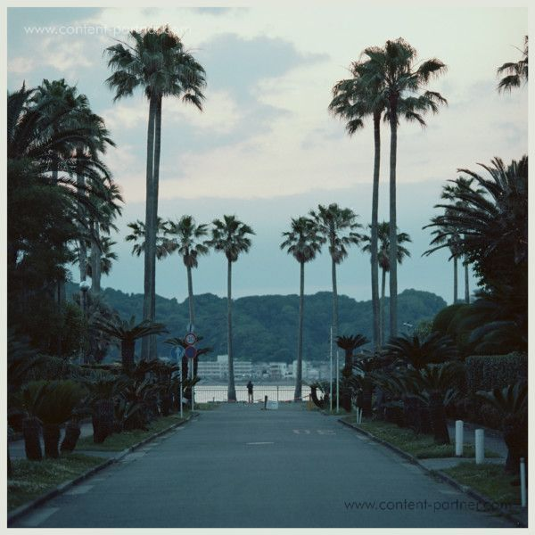 Submerse - Are You Anywhere (LTD. Green Vinyl+MP3)