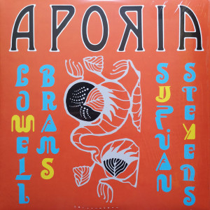 Sufjan Stevens & Lowell Brams - Aporia (Ltd. Yellow Vinyl LP)