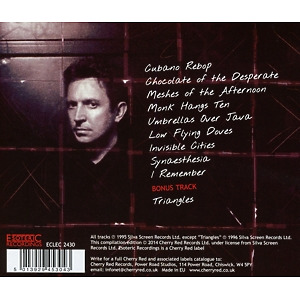 Summers,Andy - Synaesthesia (Expanded+Remastered Edit.) (Back)