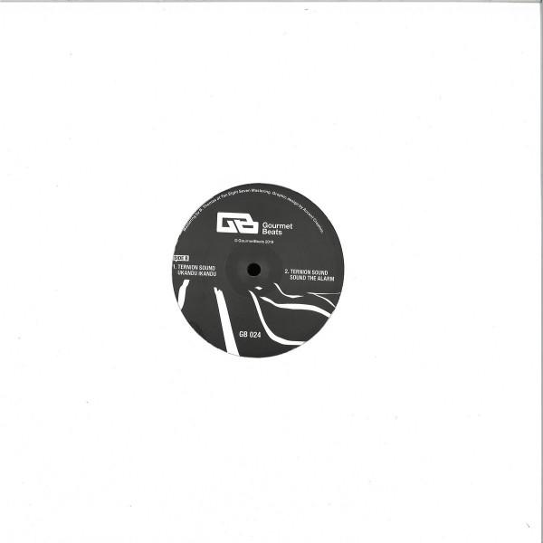 Ternion Sound - Sound The Alarm (Back)