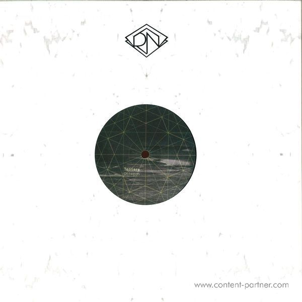 Terriers - Octagon EP (Back)