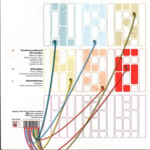 The Future Sound Of London, Monolake, David Morley - DE:10.06 (Back)