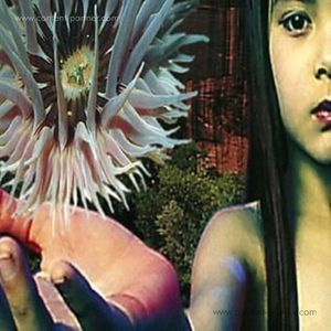 The Future Sound Of London - Lifeforms (2LP Reissue)