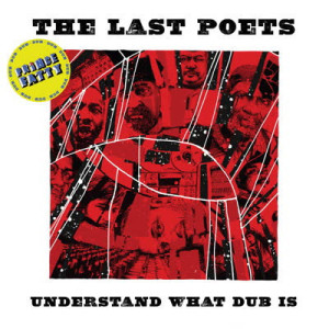 The Last Poets feat. Prince Fatty - Understand What Dub Is (LP)