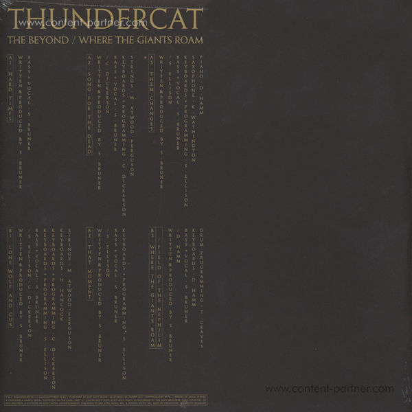 Thundercat - The Beyond/Where The Giants R (Mini Alb. (Back)