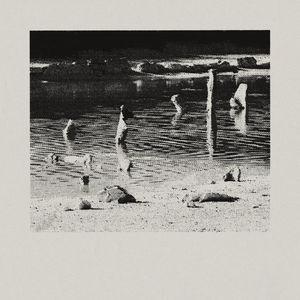 Trux - Untitled