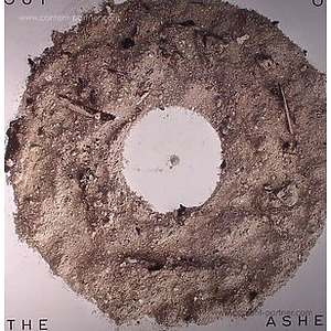 VARIOUS ARTISTS - OUT OF THE ASHES