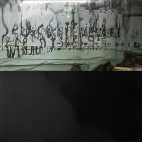 VARIOUS - Palace Of Memory Where Nostalgia Is Fear (180 gram