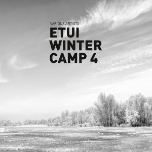 Various Artist - ETUI WINTER CAMP 4 PART ONE (WHITE VINYL)