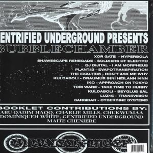 Various Artists - Bubble Chamber LP (2LP + Booklet) (Back)