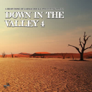 Various Artists - Down In The Valley Vol. 4