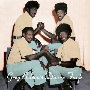 Various Artists - Greg Belson's Divine Funk (LP)