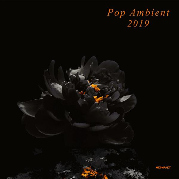 Various Artists - Pop Ambient 2019 (2LP + Download Code)