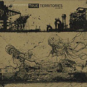 Various Artists - True Territories Volume #1