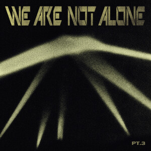Various Artists - We Are Not Alone - Part 3 (2LP)