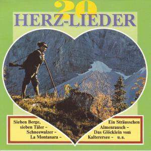 Various - Herz-Lieder Folge 2