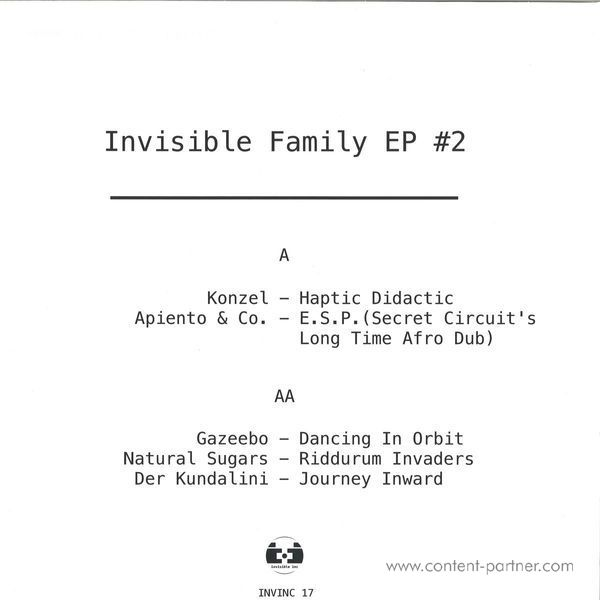 Various - Invisible Family 2 (Back)