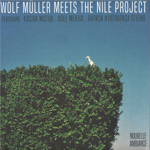 Wolf Müller Meets The Nile Project - Nouvelle Ambiance