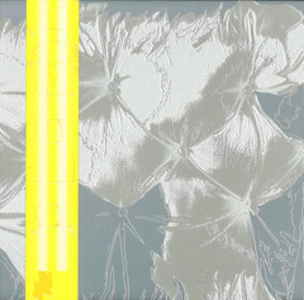 Zoe Mc Pherson & Rupert Clervaux - Plafond 5