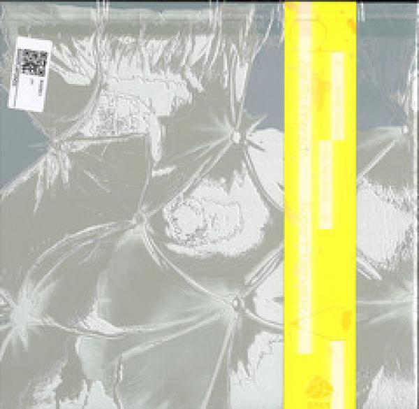 Zoe Mc Pherson & Rupert Clervaux - Plafond 5 (Back)