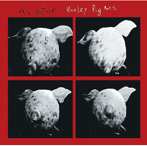 aviator - huxley pig part 2