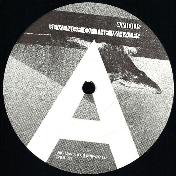 avidus - revenge of the whales